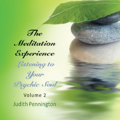 The Meditation Experience: Listening to Your Psychic Soul, Vol. 2 audiobook cover art