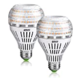 [Upgraded] SANSI 27W (250 Watt Equivalent) A21 Omni-Directional Ceramic LED Light Bulbs, 4000 Lumens, 3000K Soft Warm White Light, E26 Base Floodlight Bulb, Home Lighting, Non-dimmable (2 Pack)