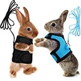 SATINIOR 2 Pieces Guinea Pig Harness and Leash Ferret Rats Hamster Soft Mesh Harness Leash Vest Set with Bell for Small Pet Rabbit Iguana Squirrel Chinchilla (Blue, Black,M)