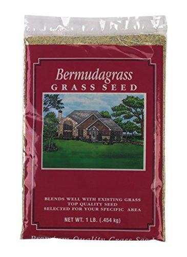 X-Seed Unhulled Bermuda Grass Plant, 1 lb,