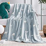 Vangao Glow in The Dark Throw Blanket Dinosaur Pattern Halloween for Boys and Girls Premium Soft Flannel Fluffy Blanket for Bedroom Living Room, 40x60 Inch,Blue