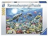 Ravensburger - Maravillas del Mundo Submarino, Puzzle 5000 Piezas (17426 3)