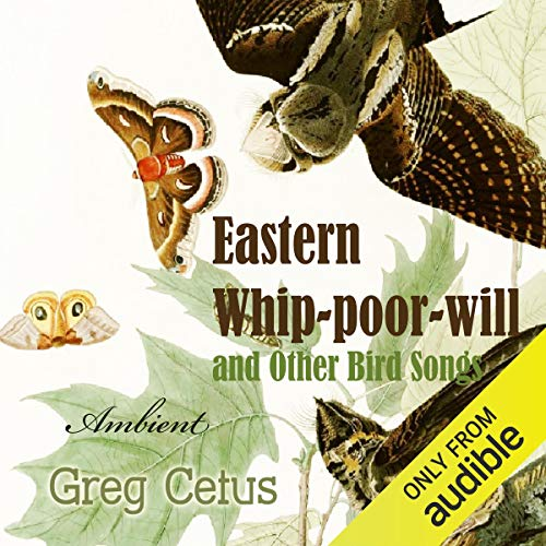 Eastern Whip-poor-will and Other Bird Songs Audiobook By Greg Cetus cover art
