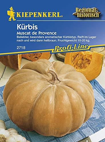 Sperli 2718 Gemüsesamen Kürbis Muscat de Provence, grün