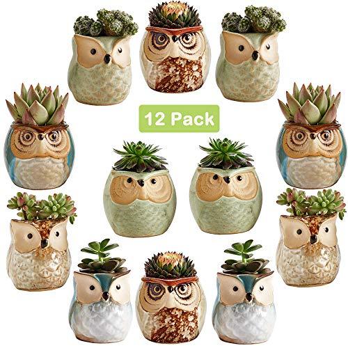 Sun-E 2.5 Inch Owl Pot Ceramic Flowing Glaze Base Serial Set Succulent Plant Pot Cactus Plant Pot Flower Pot Container Planter Bonsai Pots with A Hole Perfect Gift Idea 12 in Set