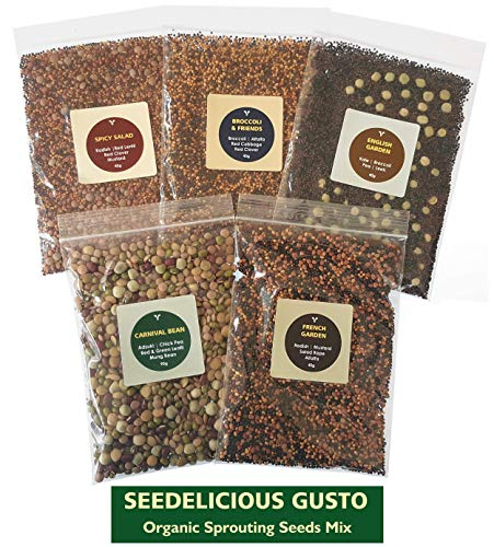 Seedelicious Gusto Bio-Sprossen-Samen - Mix aus 15 Gemüse-Samen mit Alfalfa, Rettich, Senf, Brokkoli - Schnell wachsendes Superfood für besonders gesunde Ernährung |5 vorgemischte Päckchen |250g