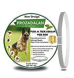 PROZADALAN Nuevo Diseño - Collares Antiparasitario para Perros, Eficaz Collar Antiparasitos Perros contra Pulgas y Garrapatas, 63cm Ajustable e Impermeable para Mascotas Pequeñas, Medianas y Grandes