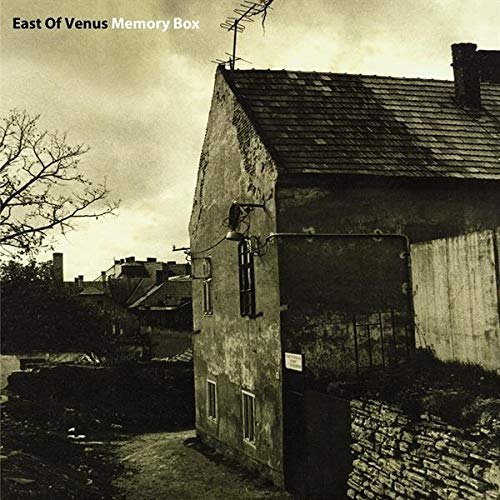 Memory Box (Clear Colored Vinyl, Includes Download Card) [Vinilo]