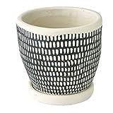 SPICE OF LIFE(スパイス) 植木鉢 レリーフプランター ドットライン ブラック 直径12.5×12cm セメント 底穴あり 皿付き CCGH1820BK