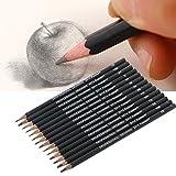Lápices 14pcs 12B 10B 7B 8B 6B 5B 4B 3B 1B 2H 4H 6H grafito Sketching Profesional fijado para el lápiz para el estudiante de la Escuela de Dibujo