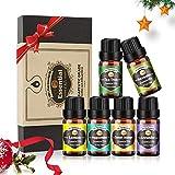 Innoo Tech Huiles Essentielles 6 x 10 ml Aromathérapie 100% Pure et Naturelle, Huile Essentielle pour Diffuseurs Massage, Lavande/Citron/Orange douce/Arbre à thé/Menthe poivrée/Eucalyptus
