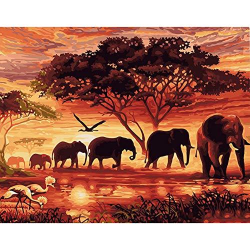 GKJRKGVF Frameloze schilderij zonsondergang olifanten landschap DIY schilderijen op nummer-muurkunst handgeschilderd olieverfschilderij op canvas 40x50 cm