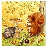 Leezeshaw 5D DIY Diamant Malen nach Zahlen Kits berühmte Strass-Stickerei Gemälde Bilder für Home Decor – Igel & Eichhörnchen 30x30cm Hedgehog&Squirrel