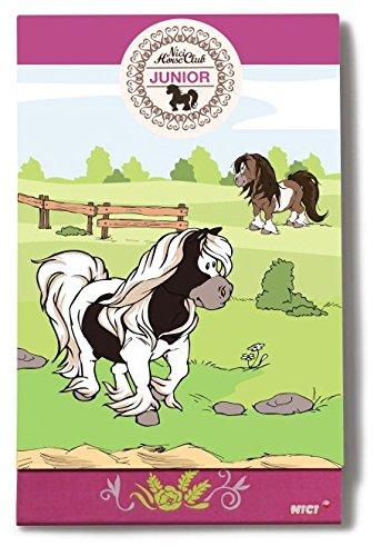 Kladblok A6 Pony Poonita w/spiegel folie