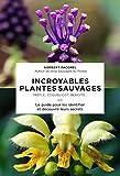 Guide des plantes sauvages pour les débutants
