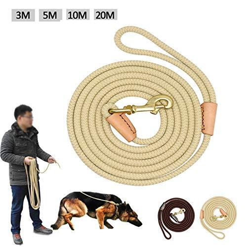 ZYTDE Haustiergeschirr Strapazierfähige Hundeleine Nylon Langleinen Seil Hundetraining Führleinen 3M 5M 10M 20M Für Mittelgroße Hunde rutschfest (Beige 3m)
