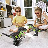Remote Control Dinosaur Toys for Kids Boys Girls RC Realistic Walking Tyrannosaurus Toy LED Eyes with Roaring Spraying Function Dinosaur Toys for 3-12 Old
