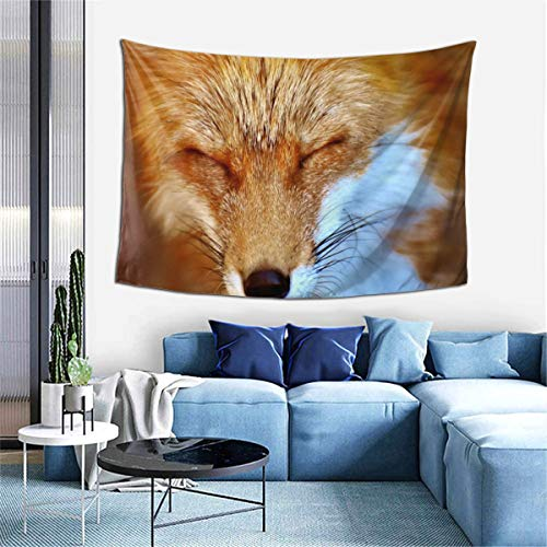 NRDXQ Fox Wildlife Photography Tapestry Wall Hanging Home Decor Bedding Custom Wall Blanket Art for Bedroom Living Room Dorm