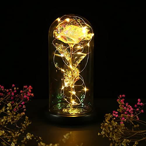 Gomyhom Rose Eternelle, Fleurs Artificielles avec LED, Belle et La Bête Rose, idée Cadeau Femme, Cadeau fête des Grand Mere, Cadeaux pour Maman, Adapté Anniversaire Cadeau, Anniversaire De Mariage