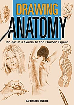 Drawing Anatomy: An Artist's Guide to the Human Figure by [Barrington Barber]