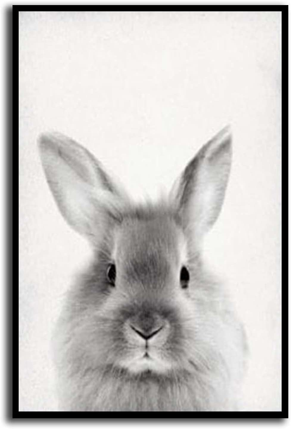 Latest item With Frame Manufacturer direct delivery Baby RABBIT photo rabbit vintage poster