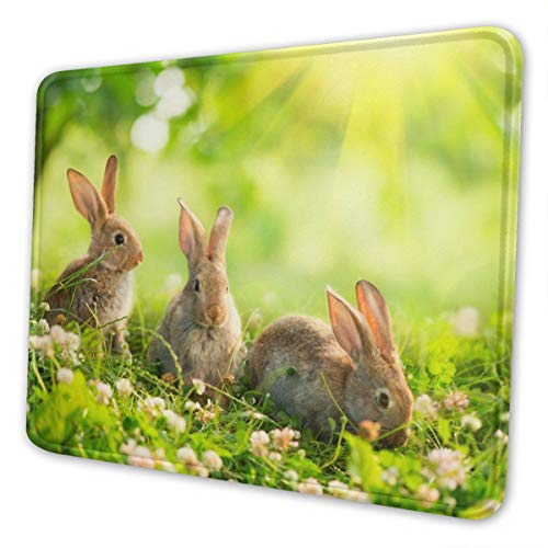 Rabbit Mousepad Funny Personalized Group Rabbits On Green Grass Scene Picture Design Anti Slip with Stitched Edges Mousepad Cute Desk Pad Keyboard Mat for Work & Gaming & Gift