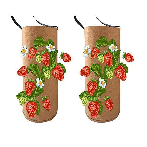 2 Stück Hängend Erdbeer-Pflanzbeutel, Erdbeeren Pflanztaschen, Vertikale Vlies Filz Pflanzsack für Erdbeer & Tomaten, 38cm*22cm (2 Stück)
