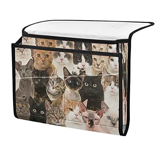 Organizador de almacenamiento para mesita de noche, diseño de gato, junto a la caja, organizador de almacenamiento para mandos a distancia gafas de teléfono