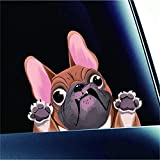 Fochutech Car Decals Funny, Dog Decal / Cute Car Stickers, Waterproof Vinyl Decals for Cars - Car Window Decals, Dog Car Decal for Window Wall Car Truck Motorcycle & More (Khaki Bulldog)
