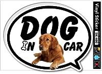 SK-400 DOG IN CAR06 ゴールデン・レトリーバー ドッグインカー ステッカー 愛犬家の方に!