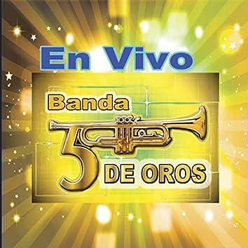 Banda 5 de Oros (En Vivo)