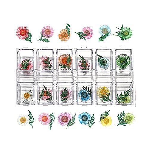 HETHYAN 1 caja de flores secas reales para velas de resina epoxi colgante collar para hacer joyas, manualidades, accesorios de bricolaje (color: Style20)