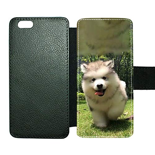 Phone Case Plastics for Women Have with Siberian Husky 5 Compatible To Apple iPhone 6/6S 4.7Inch Safeguard Choose Design 124-5