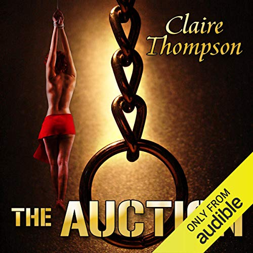 The Auction audiobook cover art