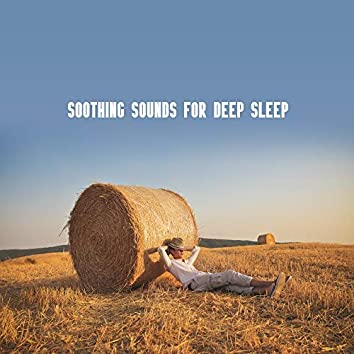 Soothing Sounds for Deep Sleep: Calm Music for Relaxation, Melodies of the Saxophone