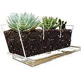 Jardinera de Ventana NIUXX con Bandeja, Jardinera de jarrón Transparente de 30 x 10 x 13 cm con Ventosa, Jardinera de Cactus suculentas de Interior, Caja de Almacenamiento Grande