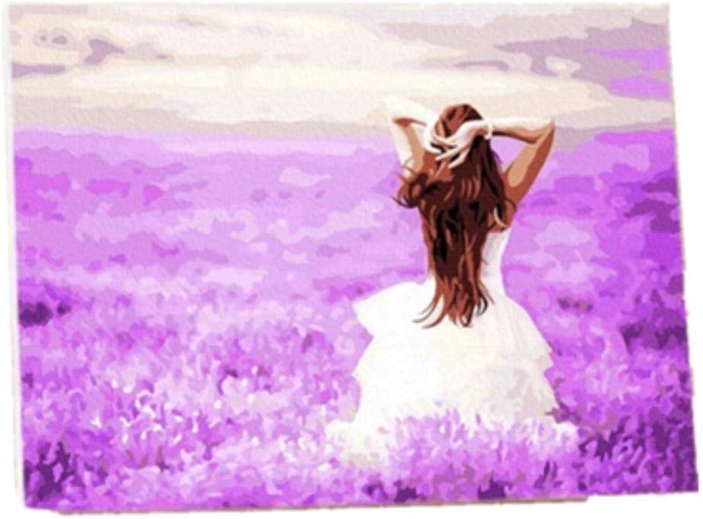 DIY Farbe Malen Nach Zahlen Für Erwachsene Weiß Rock Mädchen Lila Lavendel Feld Kindergeschenk Dekoration 40x50cm with Combination Frame B07PQ8Q5F6 | Erste Kunden Eine Vollständige Palette Von Spezifikationen