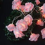 Fantes Cadena de luces LED de rosas con pilas, funciona con pilas, para bodas, fiestas, fiestas de cumpleaños, decoración interior y exterior, diámetro de rosa, 6 cm (7 pies, 20 LED)