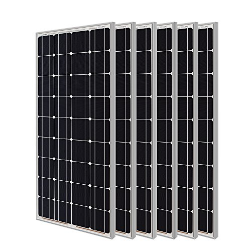 Renogy 100W Monocrystalline Photovoltaic PV Solar Panel Module, 12V Battery Charging (pack of 6)