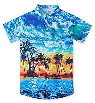 Little & Big Boys Hawaiian Button Down Shirts 3D Graphic Blue Hawaiian Palm Tree Island Top Beach Sunset Cartoon Print Slim-Fit Short Sleeve Cool Dress T Shirt Summer Tropical Luau Shirt for Casual