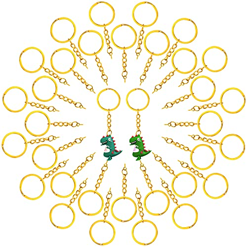 70Pcs Llavero dividido Cadena de llavero de metal Anillos Abiertos Metal Llavero con Cadena Anillo Para DIY, Accesorios (Diámetro 25 mm)
