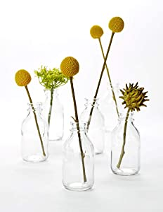 "Serene Spaces Living 6 Glass Vintage Mini Milk Bottles – Elegant Vases, 4.25"" Tall by 2"" Diameter"