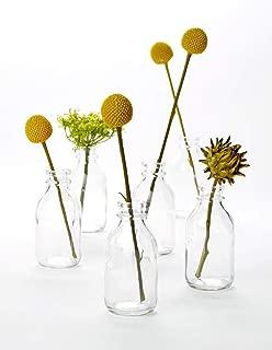 """Serene Spaces Living 6 Glass Vintage Mini Milk Bottles – Elegant Vases, 4.25"""" Tall by 2"""" Diameter"""