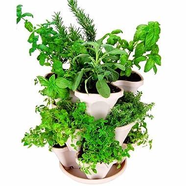 Mini-Garden Stacker- Stackable/Hangable All Season Self-Watering Planter- Indoor/Outdoor Stacking Flower Pot- Great Gardening Gift Idea - Color: Stone