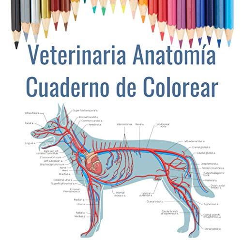 Veterinaria Anatomía Cuaderno de Colorear: Regalo para estudiantes de veterinaria   Libro para colorear de anatomía animal   Perro, gato, caballo, pájaro y más.