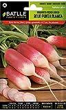 Batlle Gemüsesamen - Radieschen Mittelgross - weisse Spitze (1800 Samen)