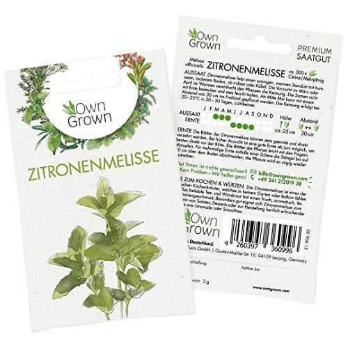 Premium Zitronenmelisse Samen (Melissa officinalis) mehrjährig, Zitronenmelisse Samen - zum Anbau im Garten und auf dem Balkon, für ca. 300 Melisse Pflanzen - Zitronenmelisse Saatgut von OwnGrown