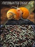 Super Freshwater Snail Mix - Snail,Shrimp,Fish & Crayfish Food (2oz )- ABF1