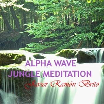 Alpha Wave Jungle Meditation