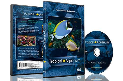 Aquarium DVD - Tropische Aquarien - 2 Stunden mit preisgekrönten Aquarien